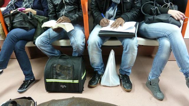 MetroMadrid_P1130659
