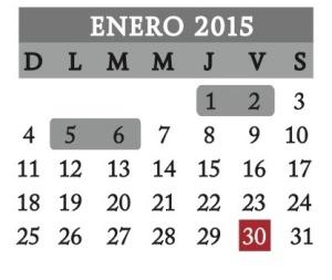 Enero2015 (1)