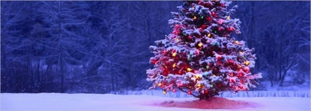 texto-para-tarjeta-de-navidad