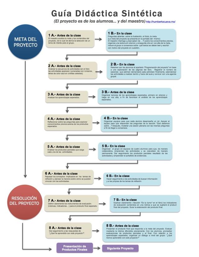 Guía Sintética copia